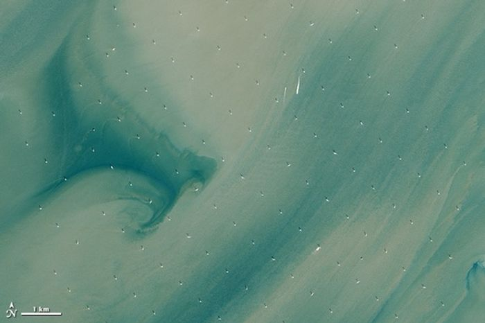 The world's largest offshore wind farm captured by the Landsat 8 satellite.  The white dots are the turbines.