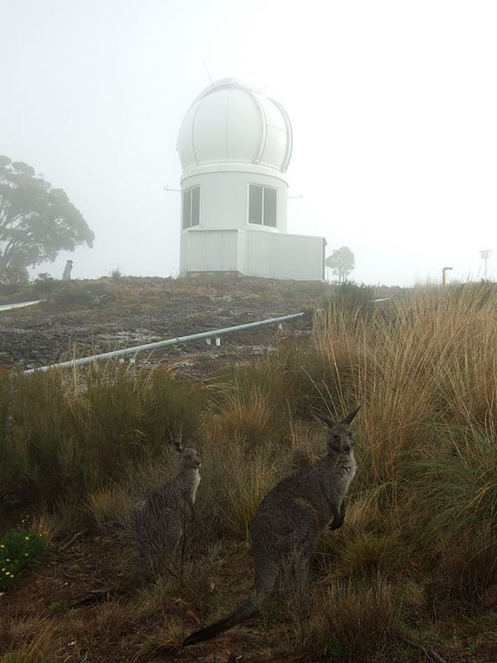 Siding Spring Observatory Australia is home to the SkyMapper Telescope and kangaroos too.