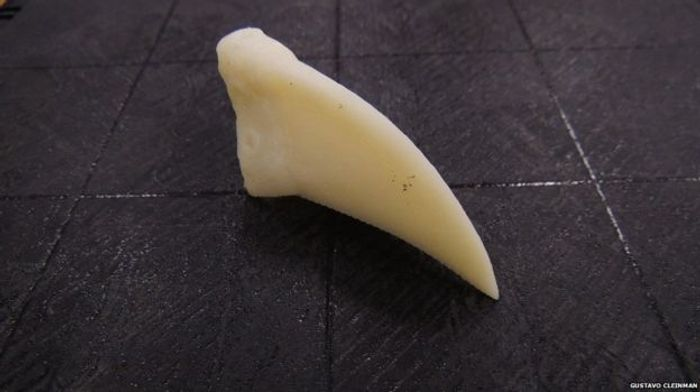 This is the beak portion that was 3D printed for the toucan.