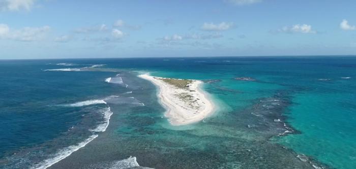 East Island. Photo: Huff Post via Chip Fletcher/YouTube