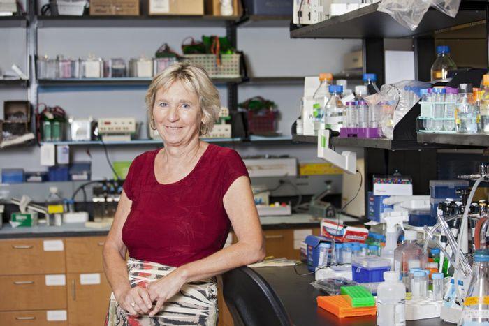 M. Rita Young, Ph.D. Source: Medical University of South Carolina