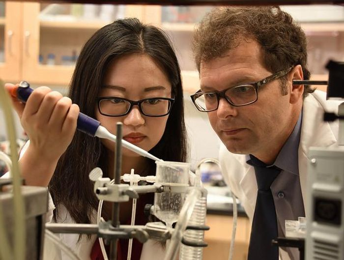 Huijuan Dou, Ph.D. candidate (left) and the study's first author, and Dr. Zsolt Bagi (right), vascular biologist in the Vascular Biology Center at the Medical College of Georgia at Augusta University. Credit: Phil Jones