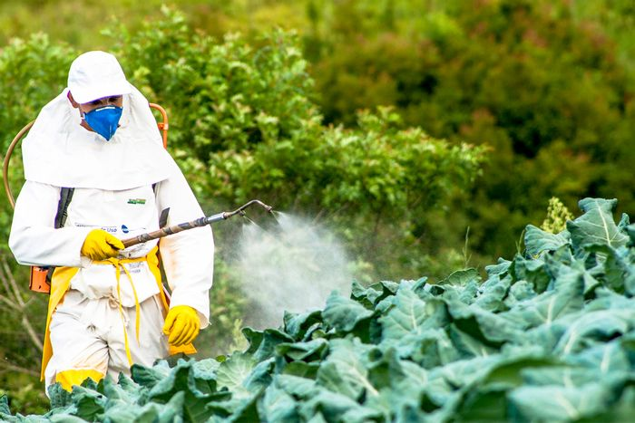 Effects from pesticides on humans are a public health hazard. Photo: Civil Eats
