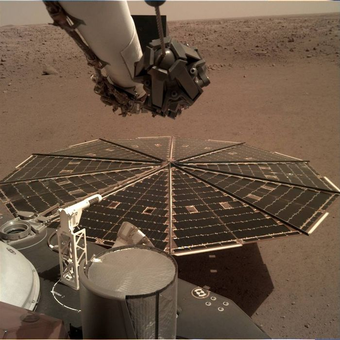 A view of Mars from InSight's perspective.