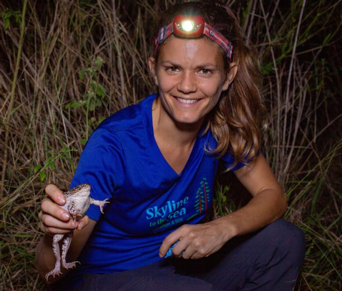 UCF Biologist Anna Savage and her team are unraveling the mystery surrounding frogs on the brink of mass extinction. / Credit: William Hawthorne
