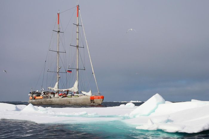 This image shows the Tara sailing on its Polar Circle expedition in 2013. / Credit: A. Deniaud Garcia/ Fondation Tara Ocean
