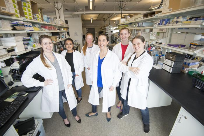 Members of the authorship team are shown inside the Peixoto lab at WSU Health Sciences Spokane. From left to right: Ashley Ingiosi, Elizabeth Medina, Kristan Singletary, Lucia Peixoto, Taylor Wintler, and Hannah Schoch. / Credit: Photo by Cori Kogan, Washington State University Health Sciences Spokane