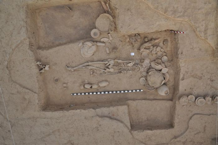 This is a photograph of the skeleton analyzed in this study, shown associated with typical Indus Valley Civilization grave goods and illustrating the typical North-South orientation of IVC burials./ Credit:  Vasant Shinde / Deccan College Post Graduate and Research Institute