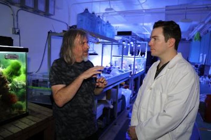 SDSU microbial ecologist and viromics research pioneer Forest Rohwer with molecular biology research associate Lance Boling. / Credit: SDSU