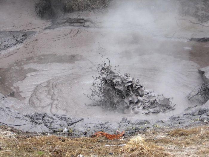 Sulfolobus acidocaldarius thrives in geothermal mud pools like this one in New Zealand / Credit: Lancaster University