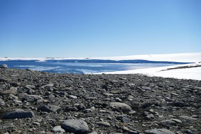 Robinson Ridge in the Windmill Islands, east Antarctica. This is the site where UNSW researchers first discovered air-eating bacteria. / Credit: Photo: Belinda Ferrari