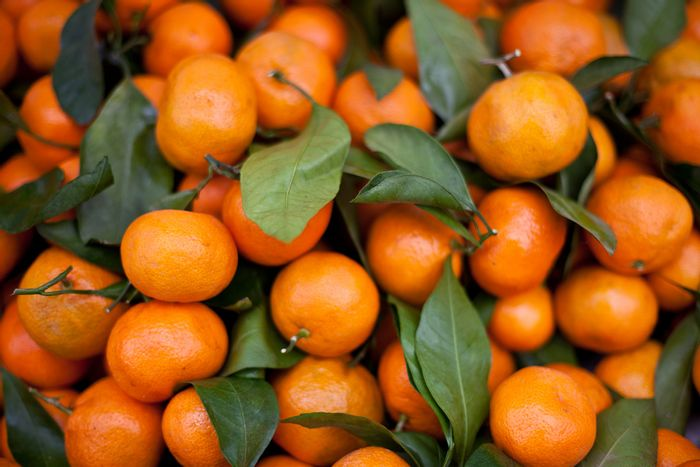 Tangerines/ Credit: Neil Conway