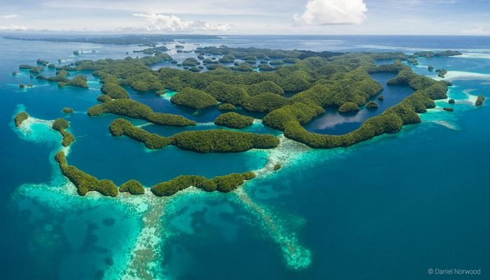 Palau is a paradise under the sea as well as above it. Photo: Siren Fleet