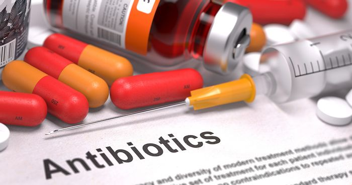 Some bacteria are intrinsically resistant to antibiotics.