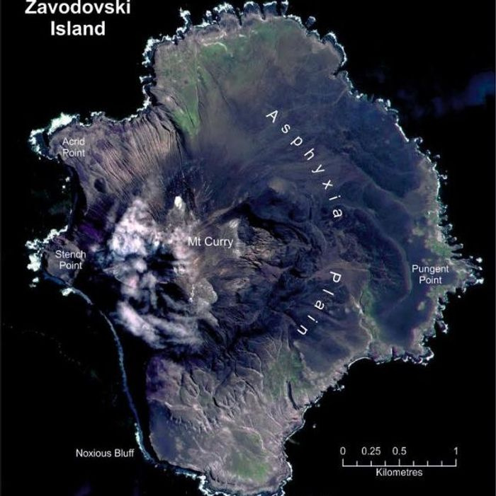 The eruption has covered half the island in ash CREDIT: PETER FRETWELL, BRITISH ANTARCTIC SURVEY