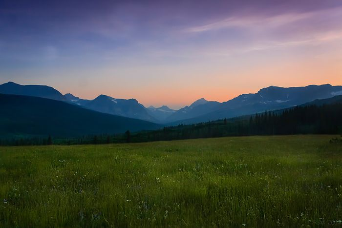 Alpine meadow overlooking Two Medicine Valley. Photo: Earthjustice