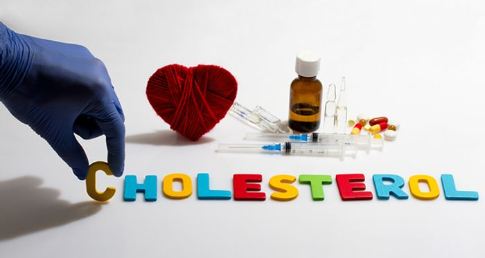 Statins inhibit the production of cholesterol