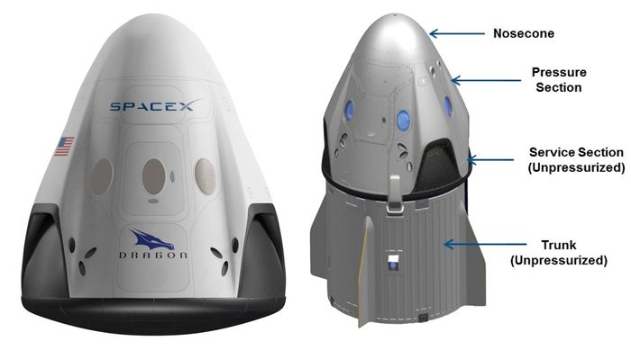 An illustration of SpaceX's Crew Dragon capsule.