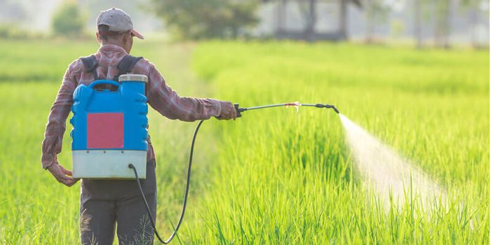 Does Roundup Cause Cancer Earth And The Environment