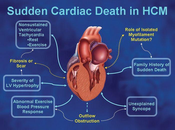 Credit: European Heart Journal