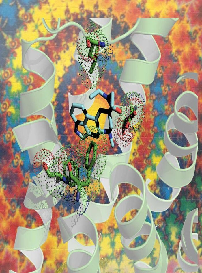 This image shows an artistic representation of LSD (in blue) fitting into a serotonin receptor (the white ribbon). / Credit: Bryan Roth