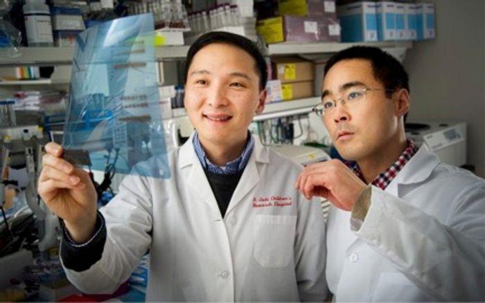 Jun Yang and Takaya Moriyama