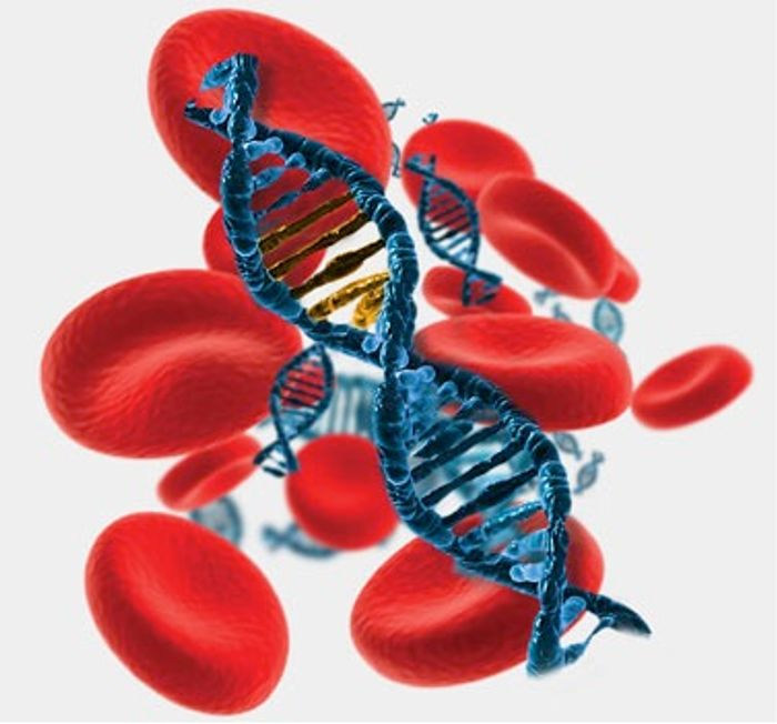 Circulating tumor DNA in blood are biomarkers for cancer
