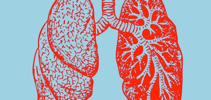 Scientists identify new growth factor involved in lung cancer proliferation