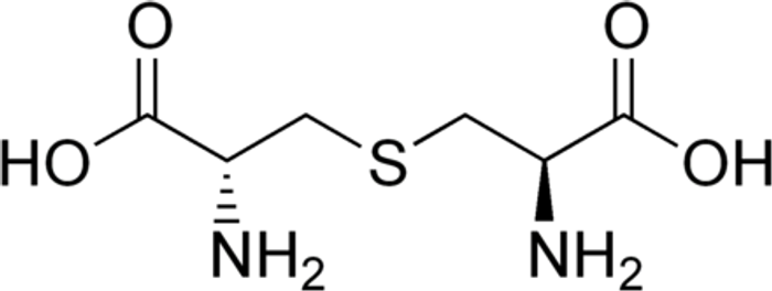 Lanthionine, an atypical amino acid found in some bacteriocins.