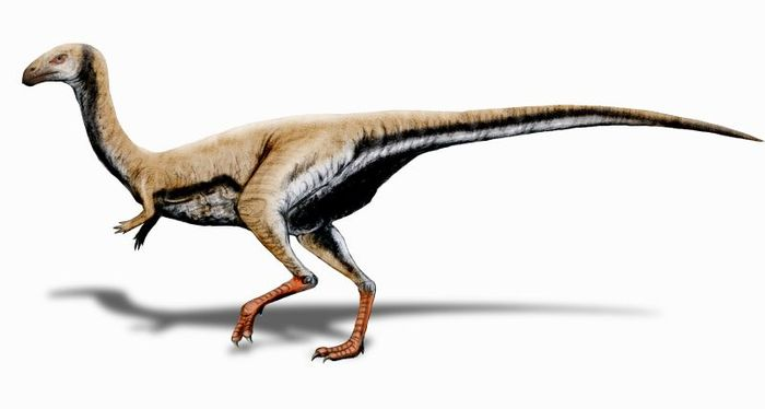 An artist's concept of the Limusaurus, which exhibits a keratin-based beak.