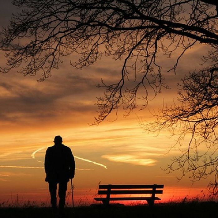 Can Loneliness Affect The Brain Neuroscience
