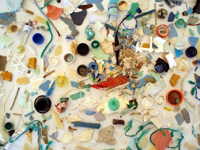 Image: NOAA Marine Debris Program