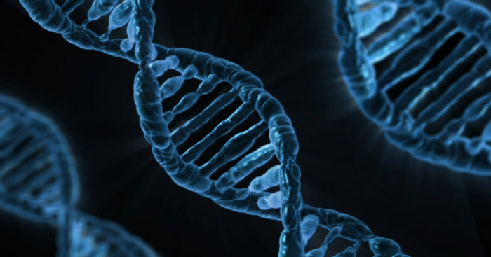Genetic techniques have shown that many forensics methods are flawed. / Image credit: Pixabay