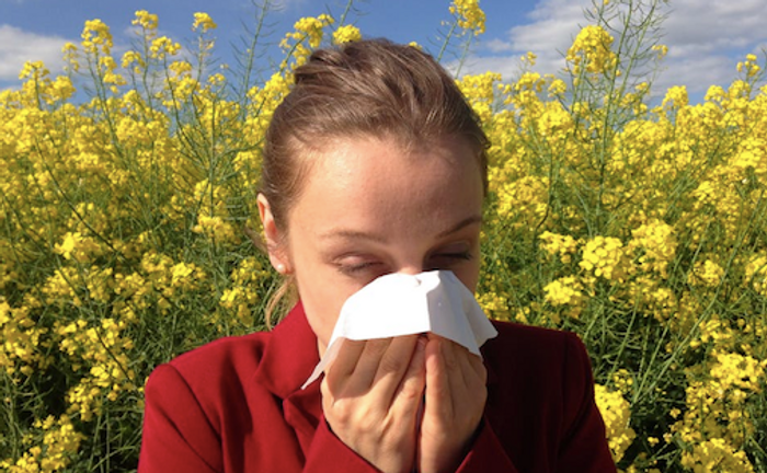Chronic allergies can have long-term complications / Image credit: Pexels