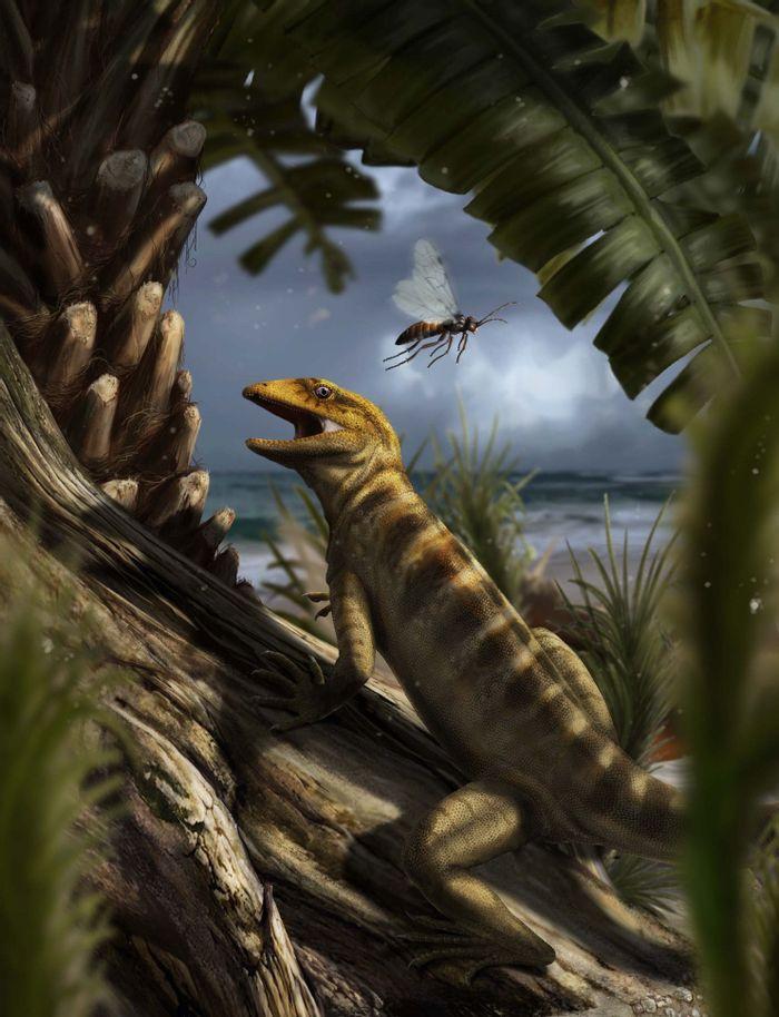 An artist's impression of Megachirella, the 240-million-year-old lizard.