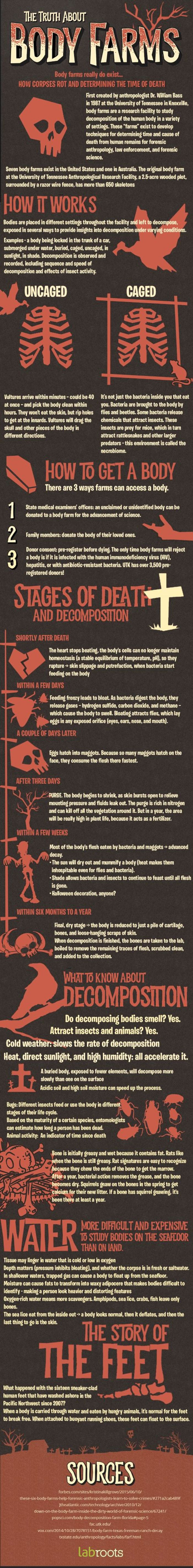 body-farms-infographic