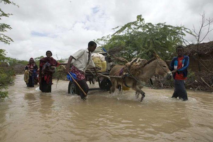 Somali refugees flee flooding in Dadaab, Kenya. Photo: UNHCR