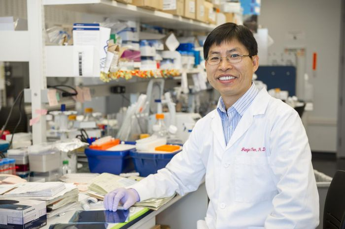 Jianjun Chen, Ph.D., Associate Professor in the Department of Cancer Biology at the UC College of Medicine. / Credit: University of Cincinnati