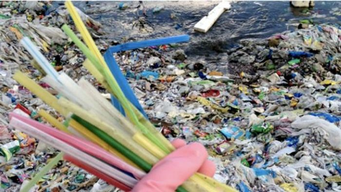Did you know that the US alone uses enough plastic straws to wrap around the Earth's circumference 2.5 times a day?!! Photo: The Hill