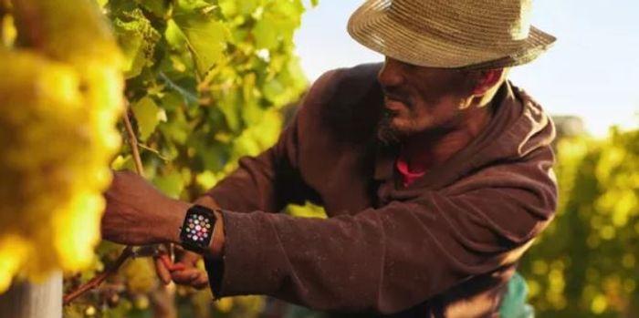 image of Calor app on a smart watch, credit: Calor