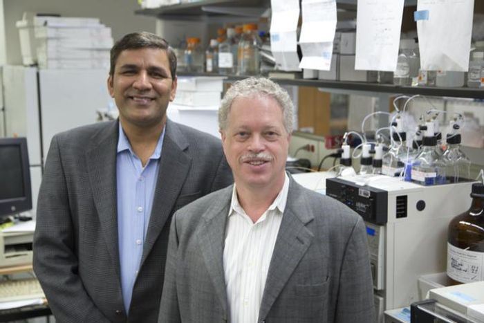 This is Towia Libermann, Ph.D., Director of the Genomics, Proteomics, Bioinformatics, and Systems Biology Center at BIDMC pictured with Manoj Bhasin, Ph.D., Co-Director of the Genomics, Proteomics, Bioinformatics, and Systems Biology Center at BIDMC. / Credit: Beth Israel Deaconess Medical Center
