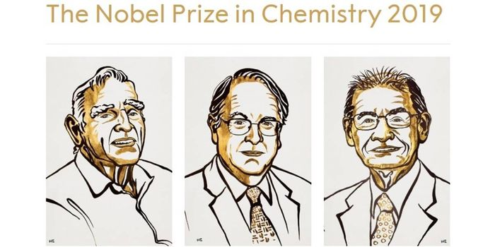 John B. Goodenough, M. Stanley Whittingham, and Akira Yoshino (Nobel Prize)