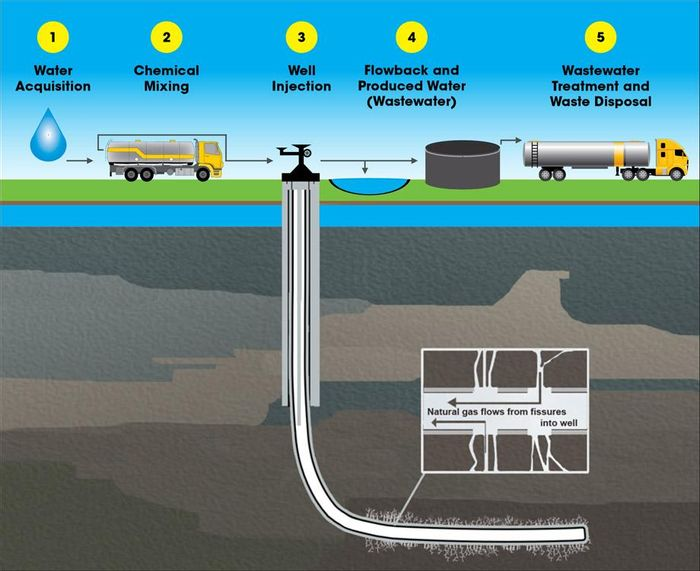 Frackibacter thrives in fracking wells.