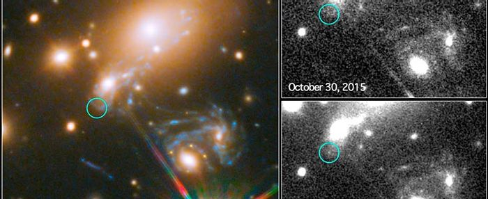 Scientists have observed the world's first predicted supernova with the Hubble Space Telescope.