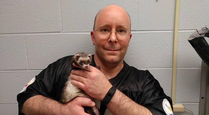 Pet owner Carl Hobi holds his pet ferret.