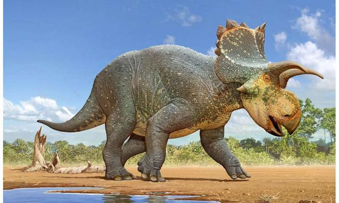 An artist's impression of the newly-discovered dinosaur.