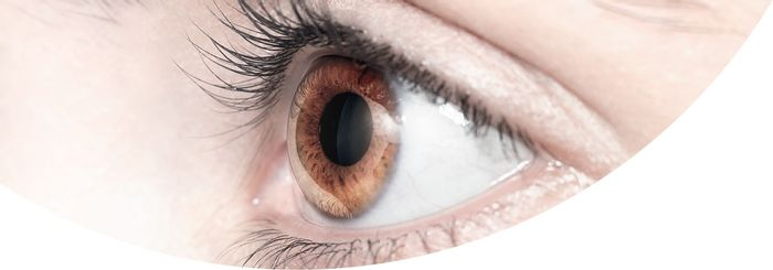 The eye microbiome stimulates the immune system.
