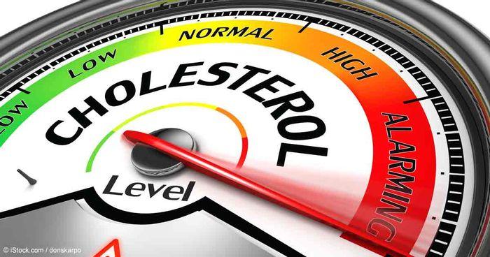 Credit: cholesterol.mercola.com