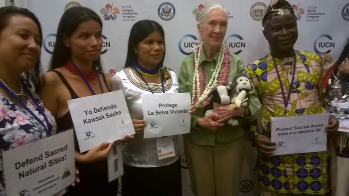 Goodall with indigenous leaders at World Conservation Congress. Photo: Mongabay