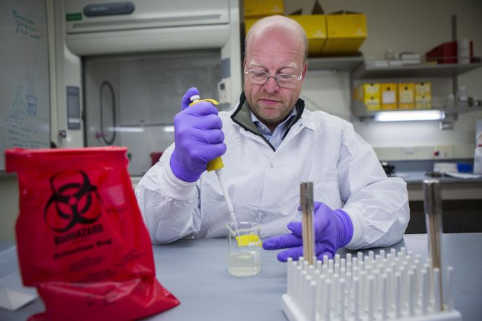 Dr. Karsten Hueffer, lead author and a professor of veterinary microbiology at the University of Alaska Fairbanks, said he hopes these research findings will help scientists better understand and treat the infectious viral disease. / Credit: Photo by Meghan Murphy.